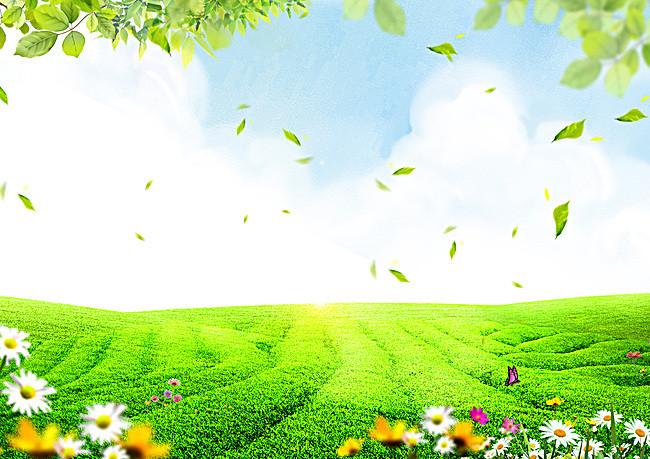 鲜花草地蓝天白云背景素材图片