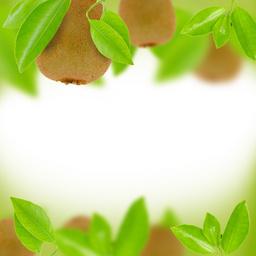 清新猕猴桃绿色水果平面广告