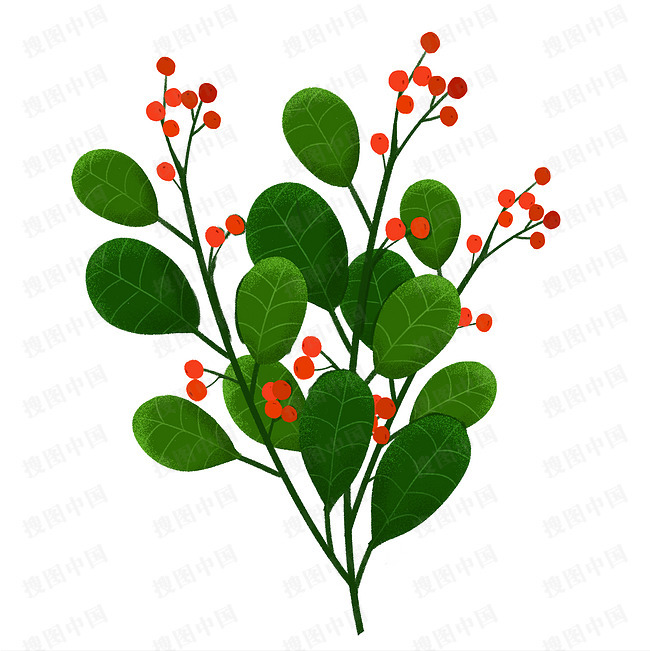 手绘插画植物绿叶果子