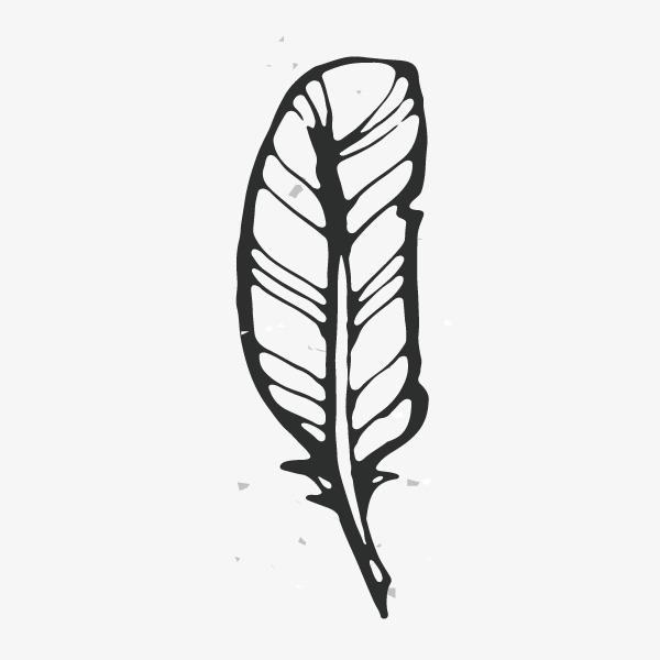 复古黑白线条羽毛