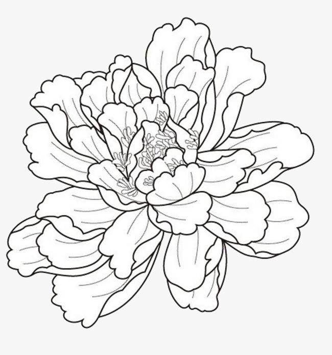 简笔画 设计 矢量 矢量图 手绘 素材 线稿 650_696