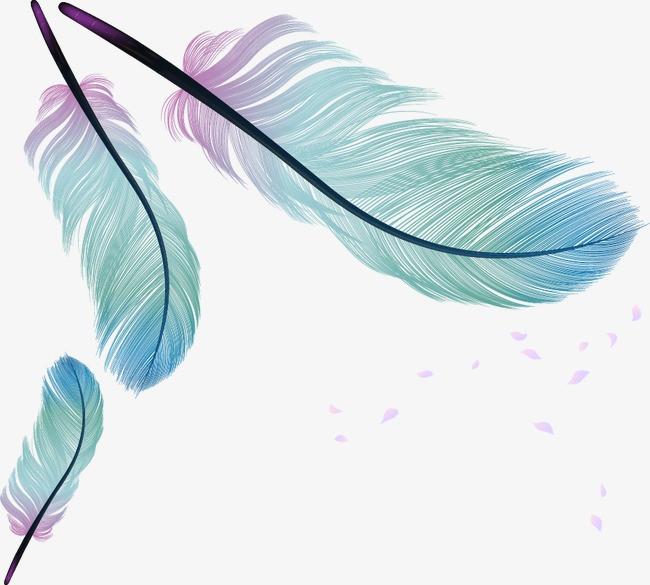 卡通 手绘 羽毛