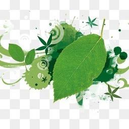 绿色树叶淘宝电商背景