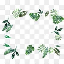 植物邊框商用素材 綠色葉