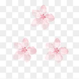 唯美清新櫻花花朵元素