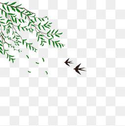 清明节柳树免扣设计素材