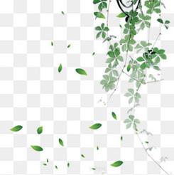 墨绿色渐变水彩植物树叶
