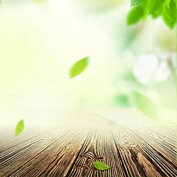 绿色清新主图背景