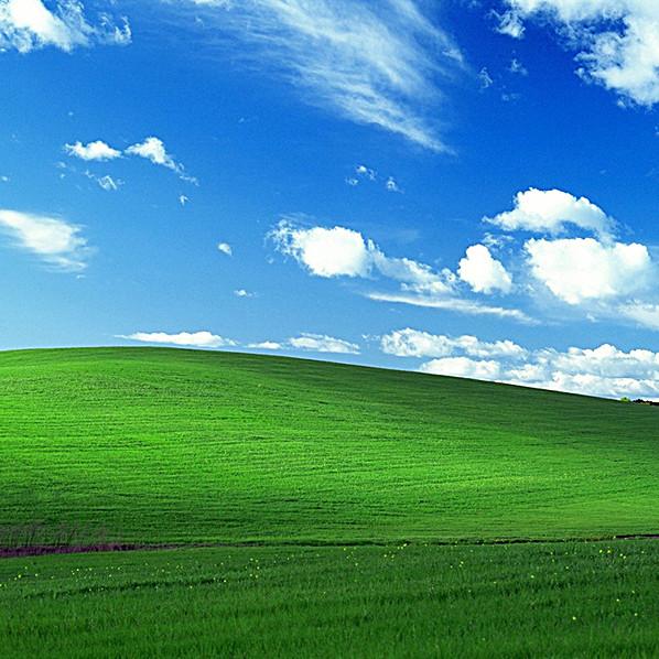 绿色自然 清新淡雅 文艺 简约 风景 主图 摄影