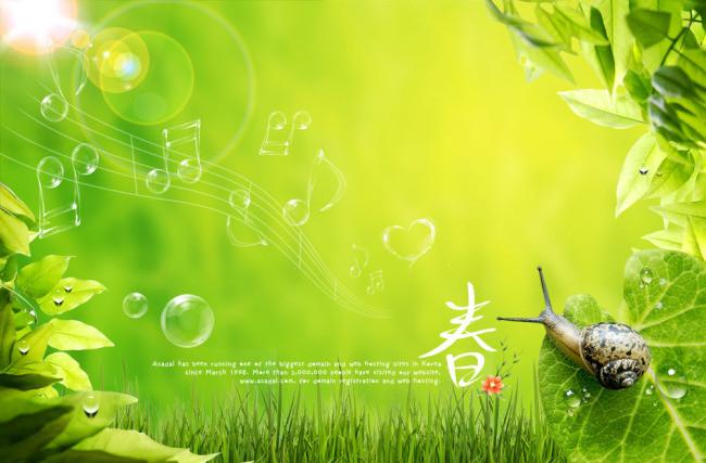 搜图中国提供独家原创春天大自然图片 清爽绿色背景下载,此素材图片已