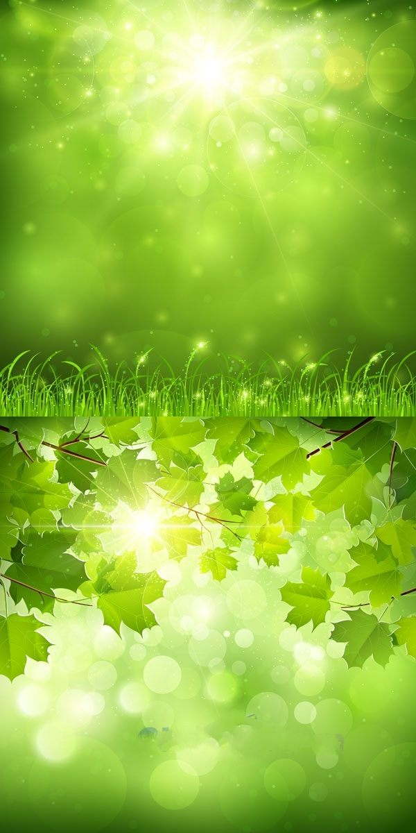 精品模板 > 绿色自然风景矢量图设计  绿色背景 自然风景 梦幻光晕 阳