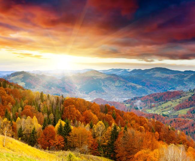 > 秋天山水风景图片  秋天山水风景 秋天 风景 枫叶 红色 秋色 阳光