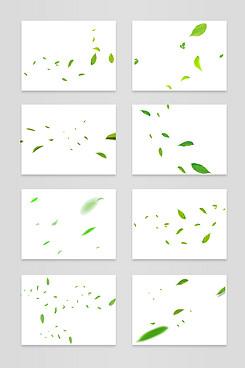 绿色树叶 素材大全