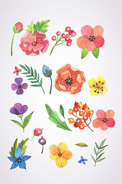 矢量手绘水彩植物素材