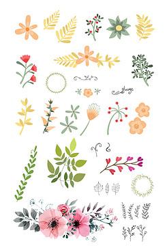 清新花卉叶子素材
