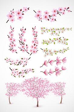 美丽樱花枝条矢量素材