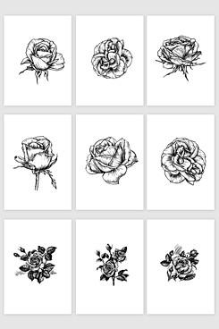 玫瑰花手绘矢量素材